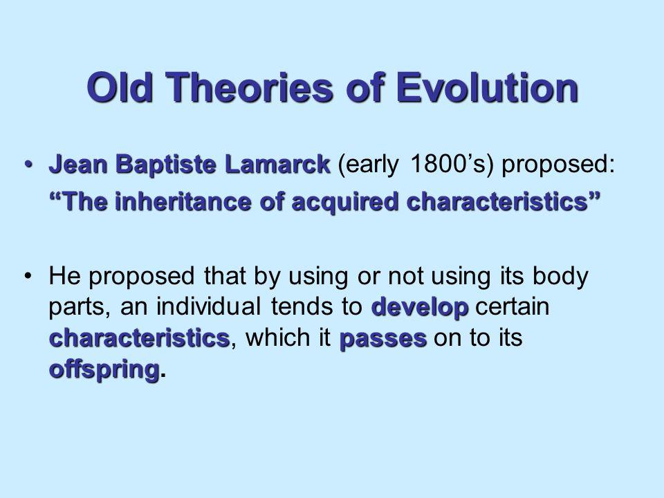 Speciation evolutionThe evolution of new species.