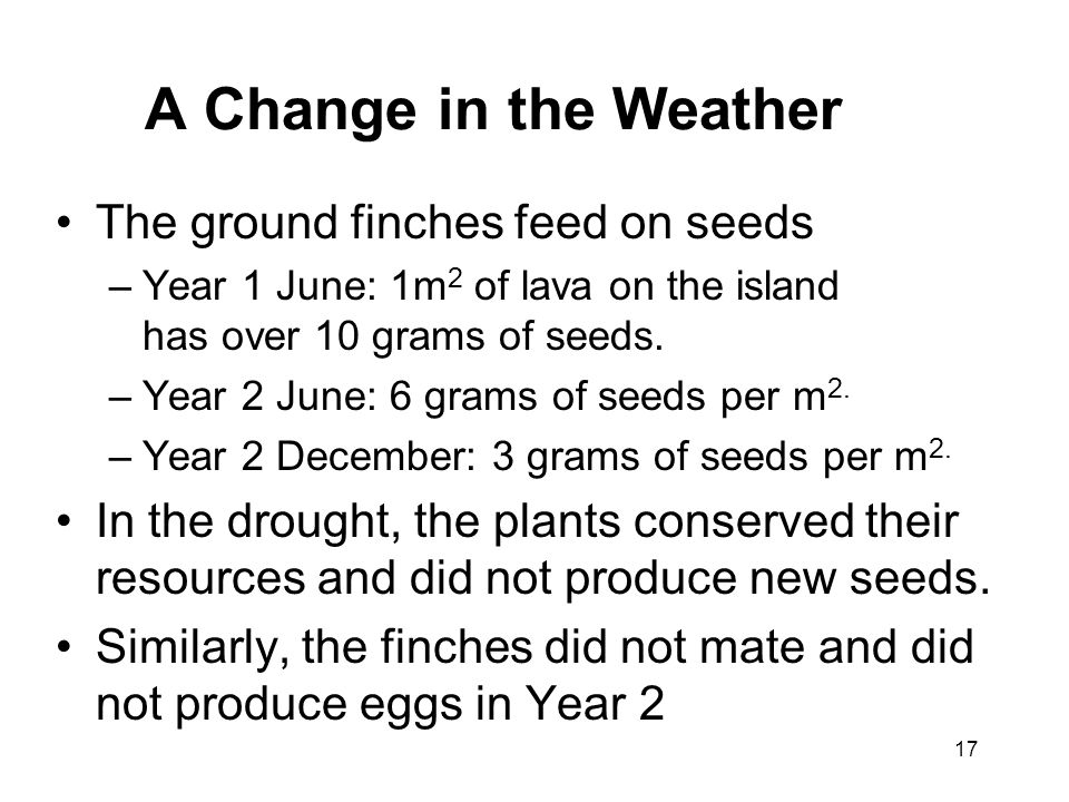 A Change in the Weather The ground finches feed on seeds –Year 1 June: 1m 2 of lava on the island has over 10 grams of seeds. –Year 2 June: 6 grams of