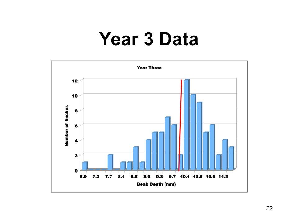 Year 3 Data 22