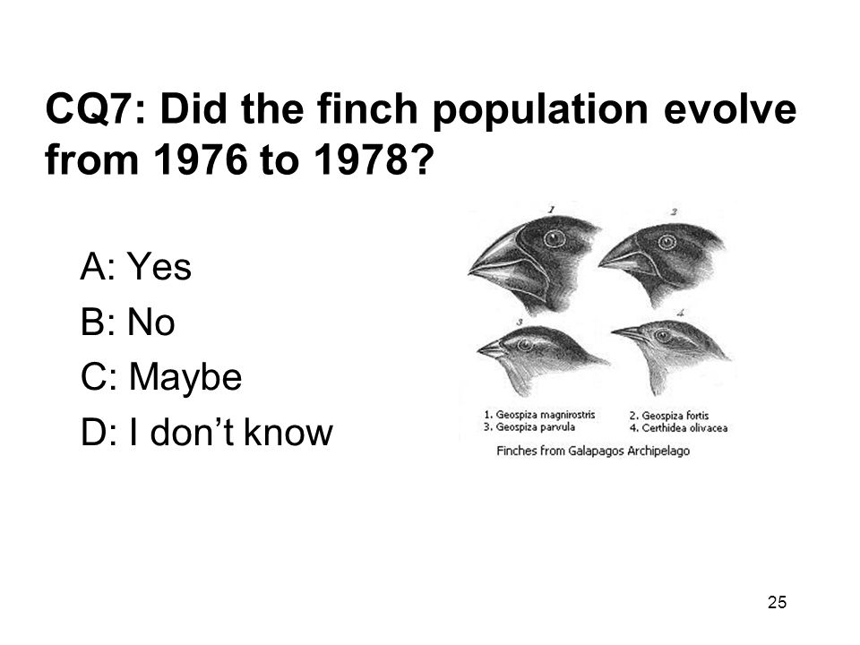 CQ7: Did the finch population evolve from 1976 to 1978? A: Yes B: No C: Maybe D: I don't know 25