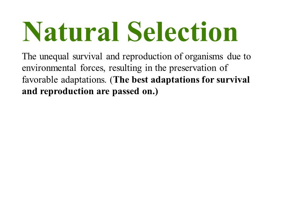 Natural Selection The unequal survival and reproduction of organisms due to environmental forces, resulting in the preservation of favorable adaptations.