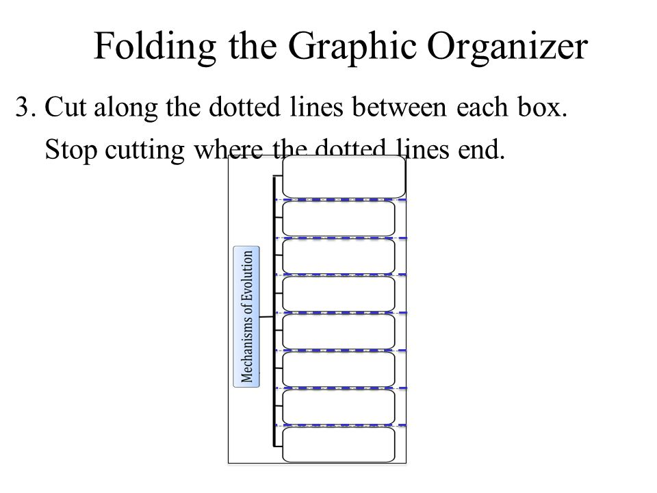 3.Cut along the dotted lines between each box. Stop cutting where the dotted lines end.