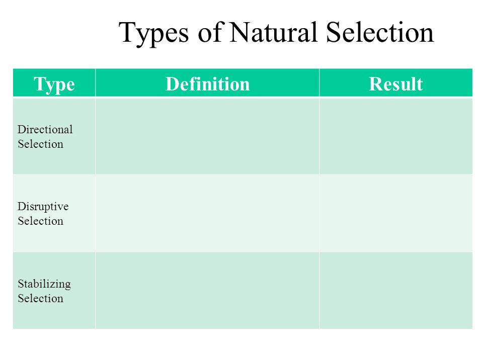 TypeDefinitionResult Directional Selection Disruptive Selection Stabilizing Selection Types of Natural Selection