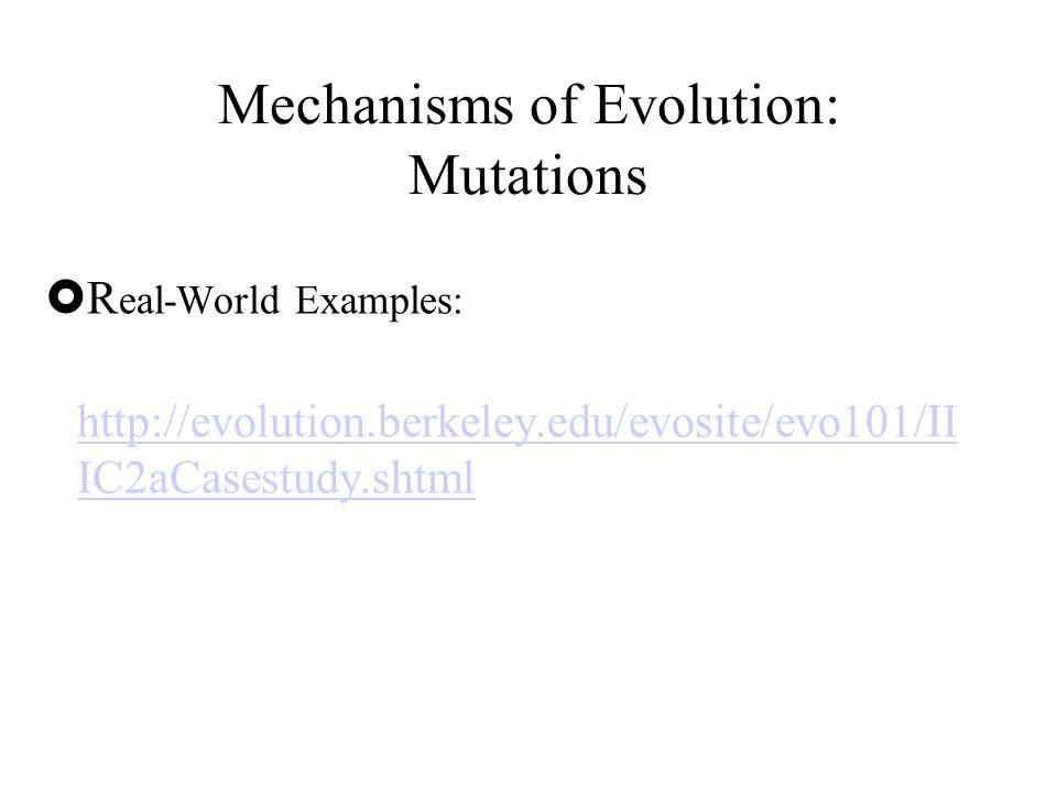  R eal-World Examples: http://evolution.berkeley.edu/evosite/evo101/II IC2aCasestudy.shtml Mechanisms of Evolution: Mutations