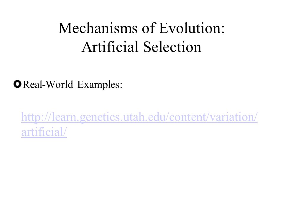  Real-World Examples: http://learn.genetics.utah.edu/content/variation/ artificial/ Mechanisms of Evolution: Artificial Selection