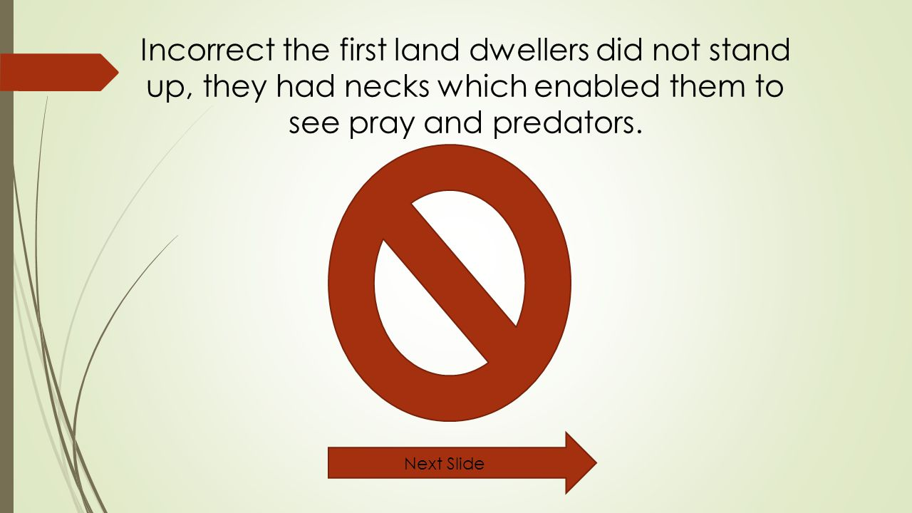 Incorrect the first land dwellers did not stand up, they had necks which enabled them to see pray and predators.