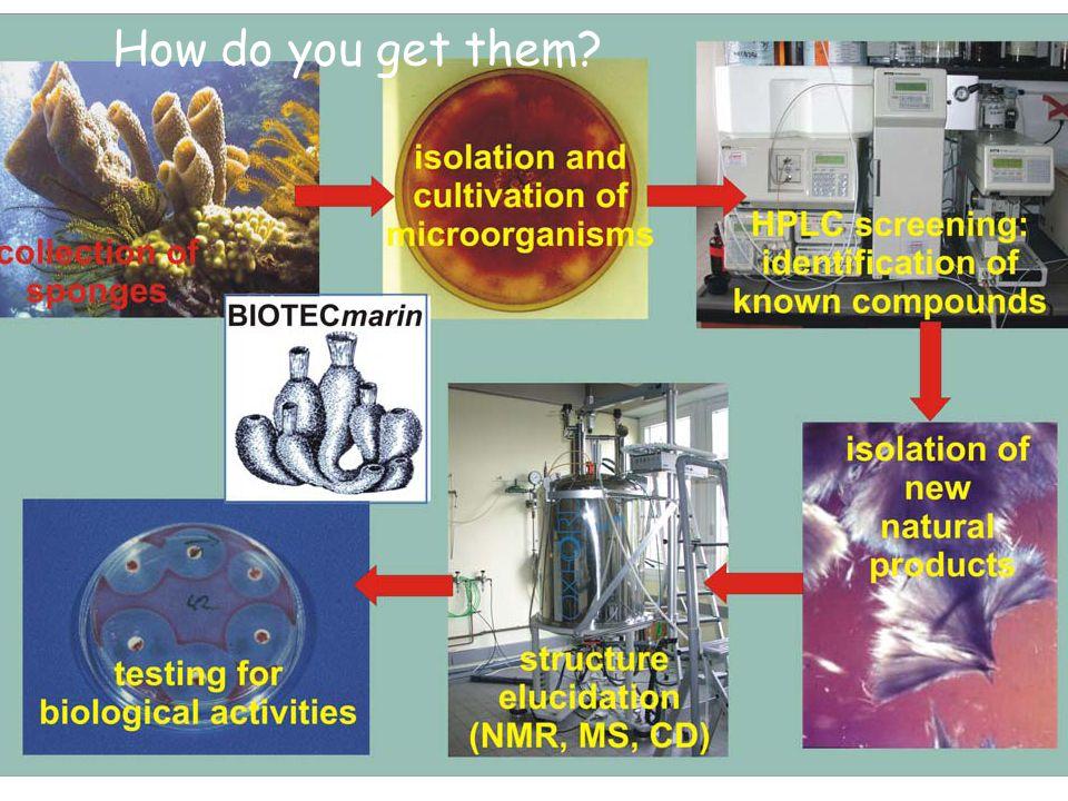 Chemistry Physics Biology Bio Chemistry Bio physics Chemical physics