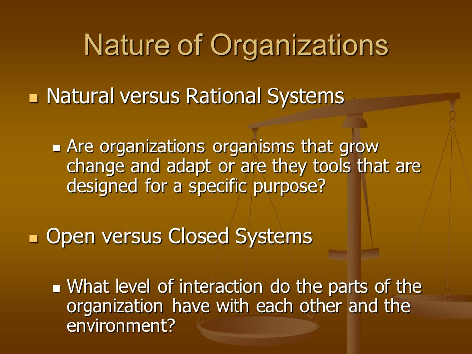Nature of Organizations Natural versus Rational Systems Natural versus Rational Systems Are organizations organisms that grow change and adapt or are they tools that are designed for a specific purpose.