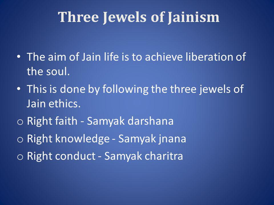 JAIN FOOD HABITS Jains are vegetarians, eat vegetables, squash, beans, peas, tomatoes, fruits, and lettuce.