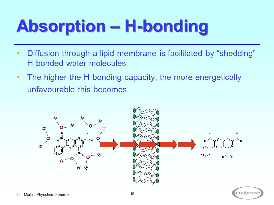 """Iain Martin; Physchem Forum 2 10 Absorption – H-bonding Diffusion through a lipid membrane is facilitated by """"shedding"""" H-bonded water molecules The h"""