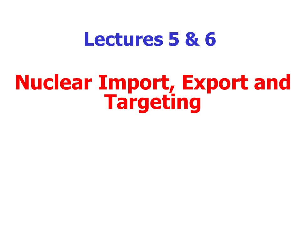 Lectures 5 & 6 Nuclear Import, Export and Targeting