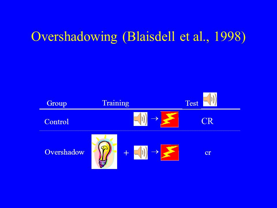 Overshadowing (Blaisdell et al., 1998) Group  cr CR  Overshadow Control Training Test +