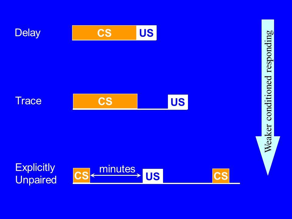 CSUS Delay CS US Trace CS US Explicitly Unpaired CS minutes Weaker conditioned responding