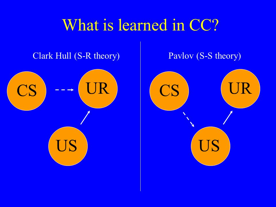 What is learned in CC? CSUSUR Clark Hull (S-R theory)Pavlov (S-S theory) CSUSUR