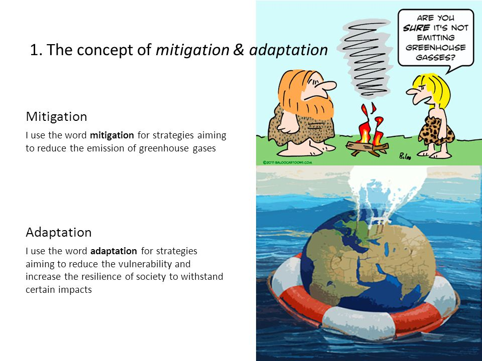 Mitigation I use the word mitigation for strategies aiming to reduce the emission of greenhouse gases Adaptation I use the word adaptation for strategies aiming to reduce the vulnerability and increase the resilience of society to withstand certain impacts 1.