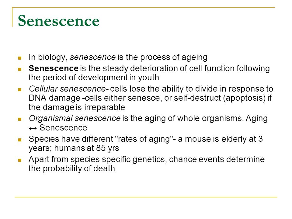 Senescence In biology, senescence is the process of ageing Senescence is the steady deterioration of cell function following the period of development