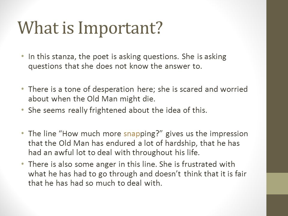 What is Important.In this stanza, the poet is asking questions.