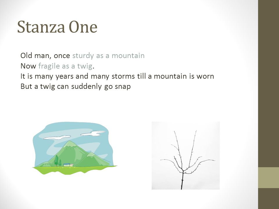 Stanza One Old man, once sturdy as a mountain Now fragile as a twig.