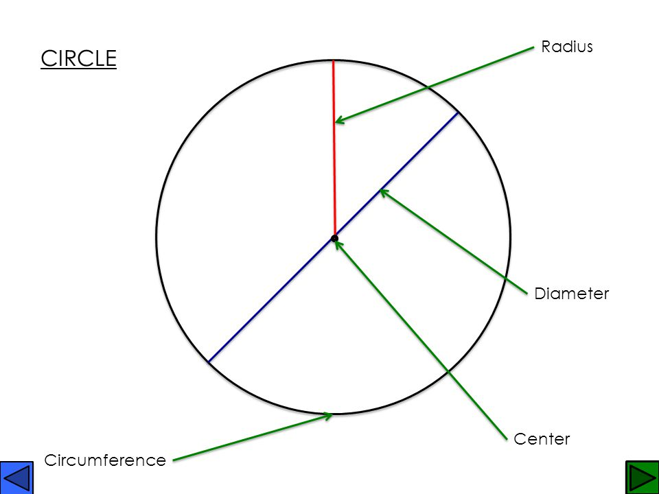 Two-Dimensional Shapes Two-dimensional shapes can be measured in two directions.