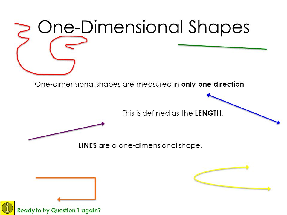 One-dimensional shapes are measured in only one direction.