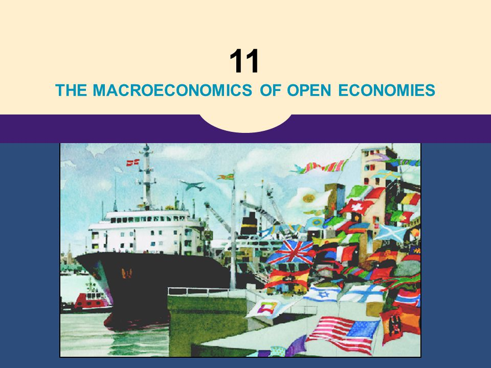 11 THE MACROECONOMICS OF OPEN ECONOMIES
