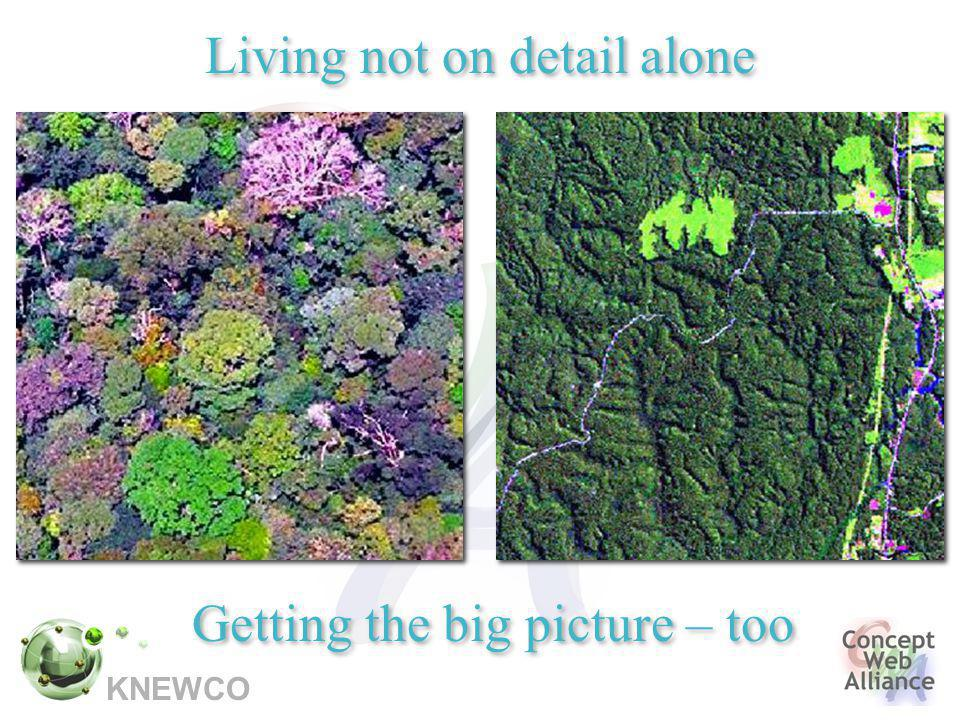 Living not on detail alone Getting the big picture – too