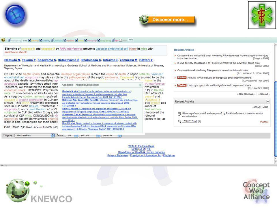 KNEWCO Semantic highlighting