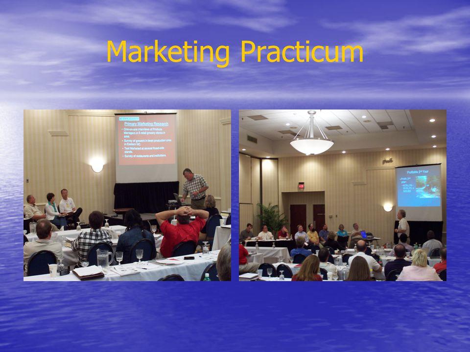 Marketing Practicum