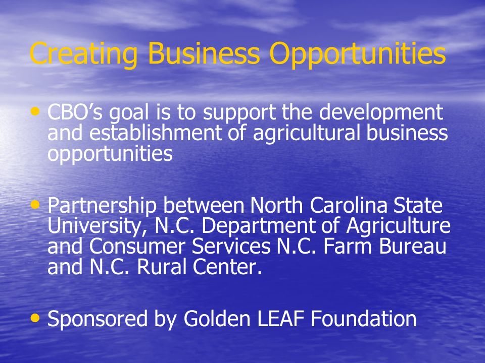 Creating Business Opportunities CBO's goal is to support the development and establishment of agricultural business opportunities Partnership between North Carolina State University, N.C.