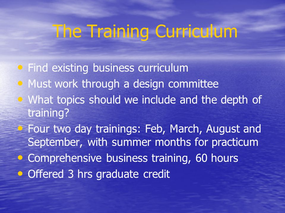 The Training Curriculum Training was designed as if someone walked into your office asking for helping with new business idea Combined lectures with group exercises Teams formed based on geographic areas Each session had time to introduce groups working in business development TEAM Marketing plan practicum Complementary training resource manual Creating Business Opportunities Website