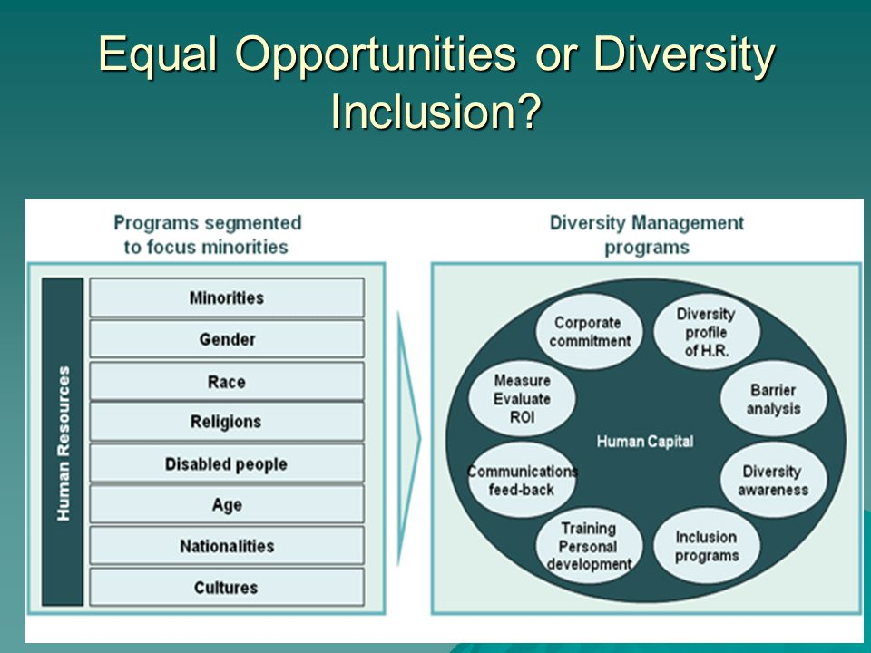 Equal Opportunities or Diversity Inclusion