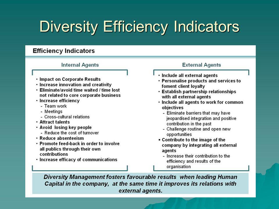 Diversity Efficiency Indicators