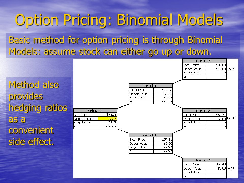 24 Option Pricing: Binomial Models Basic method for option pricing is through Binomial Models: assume stock can either go up or down.