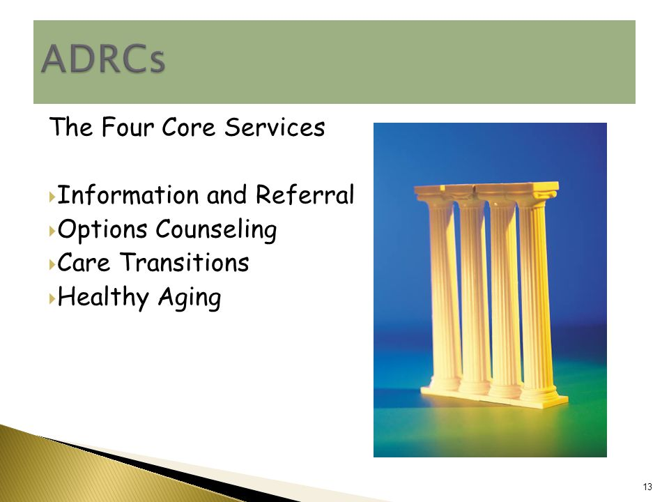 The Four Core Services  Information and Referral  Options Counseling  Care Transitions  Healthy Aging 13