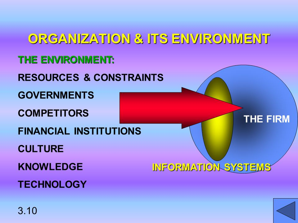 ORGANIZATION & ITS ENVIRONMENT THE FIRM INFORMATION SYSTEMS THE ENVIRONMENT: RESOURCES & CONSTRAINTS GOVERNMENTS COMPETITORS FINANCIAL INSTITUTIONS CULTURE KNOWLEDGE TECHNOLOGY 3.10