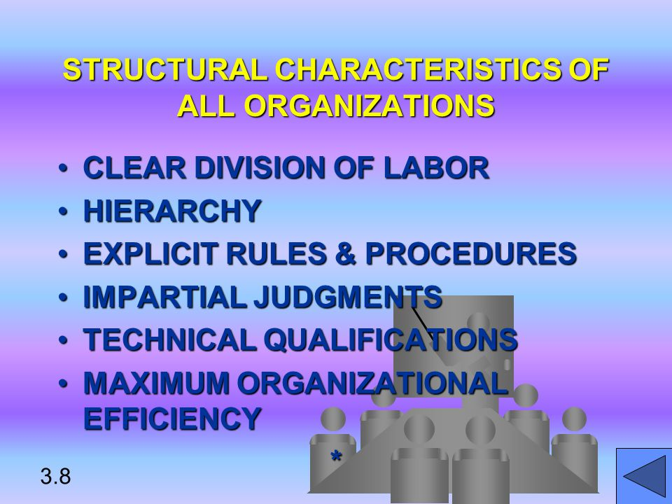 STRUCTURAL CHARACTERISTICS OF ALL ORGANIZATIONS CLEAR DIVISION OF LABORCLEAR DIVISION OF LABOR HIERARCHYHIERARCHY EXPLICIT RULES & PROCEDURESEXPLICIT RULES & PROCEDURES IMPARTIAL JUDGMENTSIMPARTIAL JUDGMENTS TECHNICAL QUALIFICATIONSTECHNICAL QUALIFICATIONS MAXIMUM ORGANIZATIONAL EFFICIENCYMAXIMUM ORGANIZATIONAL EFFICIENCY* 3.8