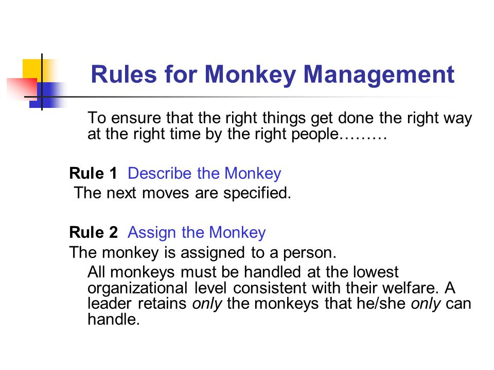 Rules for Monkey Management To ensure that the right things get done the right way at the right time by the right people……… Rule 1 Describe the Monkey The next moves are specified.