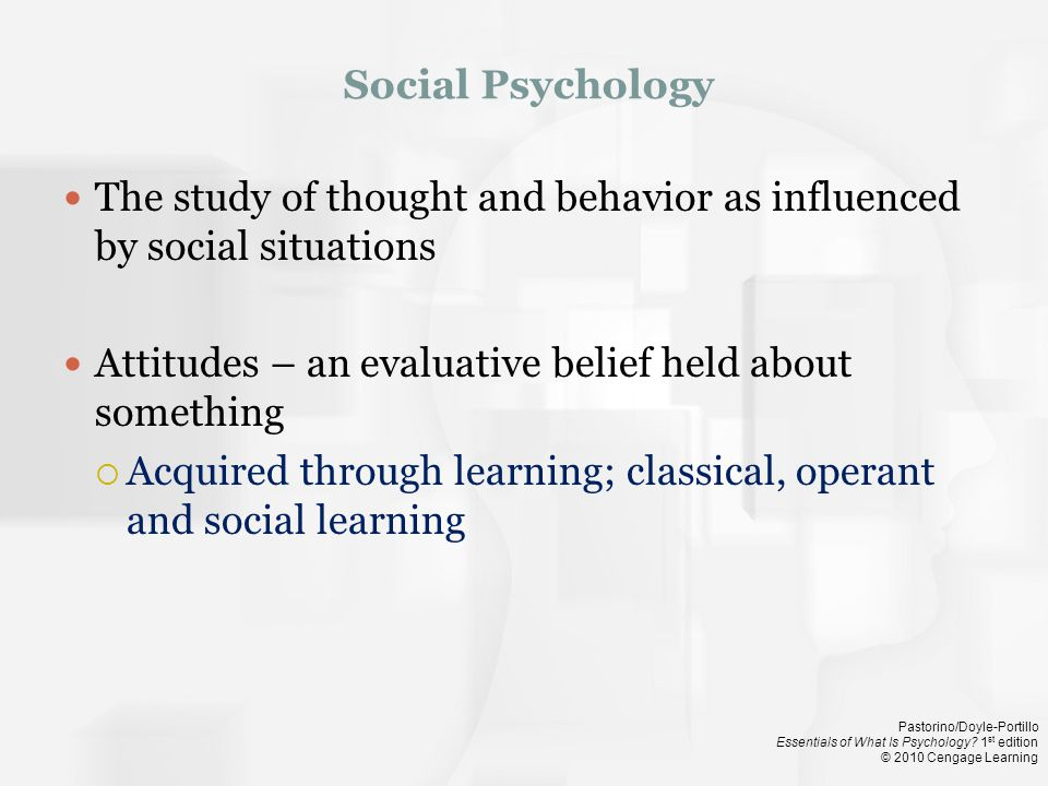 Pastorino/Doyle-Portillo Essentials of What Is Psychology.