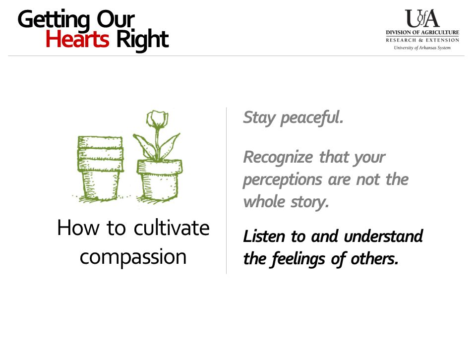 How to cultivate compassion Getting Our Hearts Right Stay peaceful.