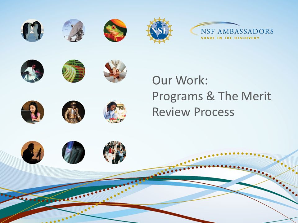 Our Work: Programs & The Merit Review Process