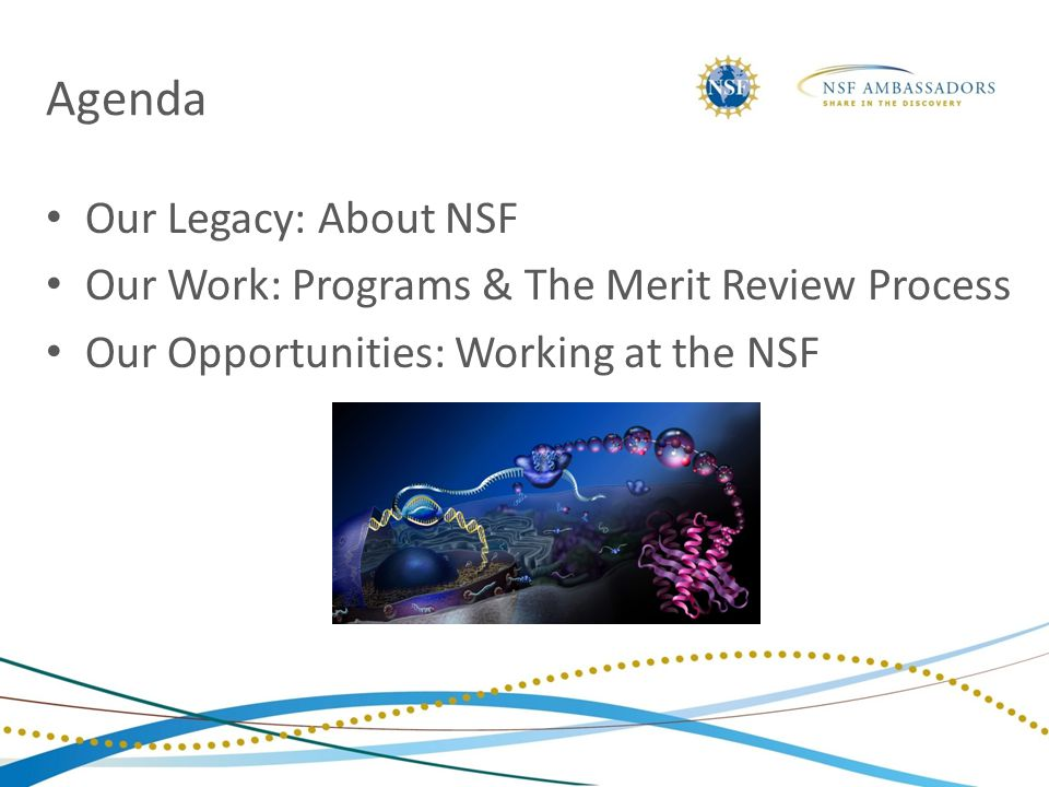 Agenda Our Legacy: About NSF Our Work: Programs & The Merit Review Process Our Opportunities: Working at the NSF