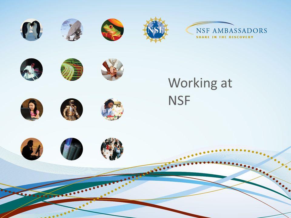 Working at NSF