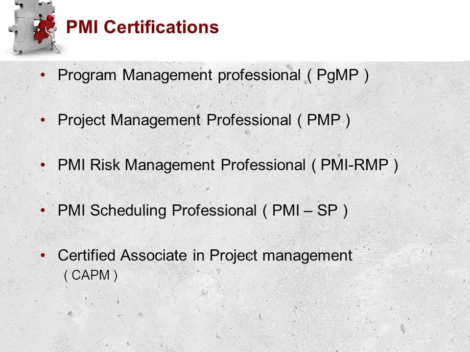 PMI Certifications Program Management professional ( PgMP ) Project Management Professional ( PMP ) PMI Risk Management Professional ( PMI-RMP ) PMI Scheduling Professional ( PMI – SP ) Certified Associate in Project management ( CAPM )