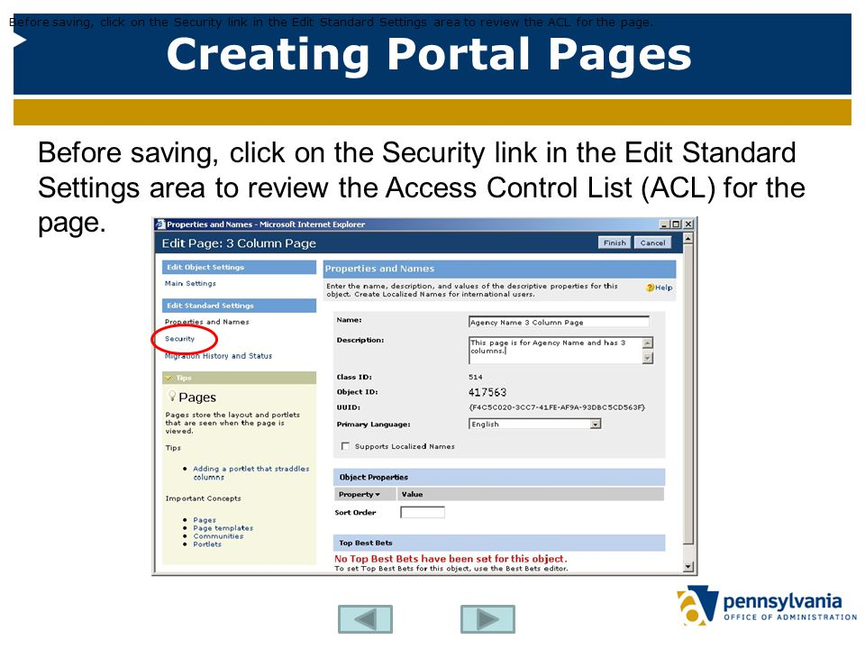 Creating Portal Pages Before saving, click on the Security link in the Edit Standard Settings area to review the ACL for the page. Before saving, clic