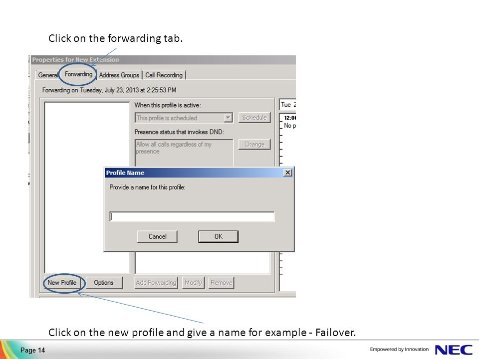 Click on the forwarding tab. Click on the new profile and give a name for example - Failover.
