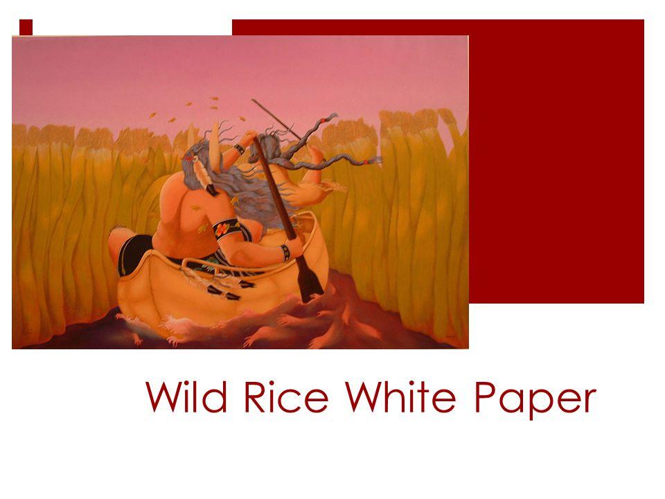 Wild Rice White Paper