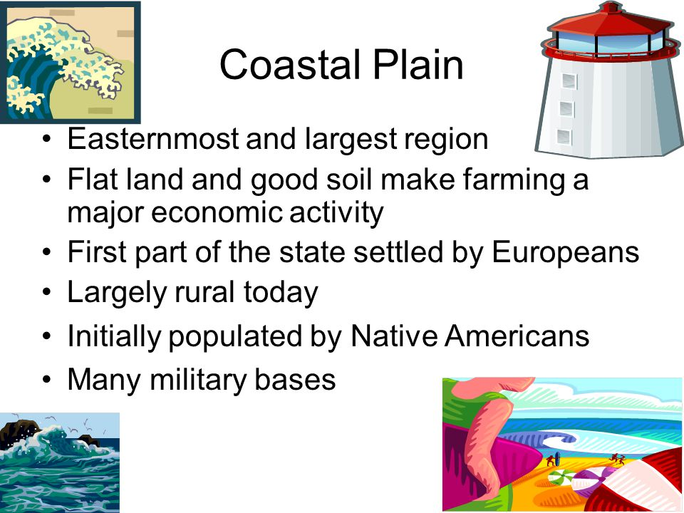 Coastal Plain Easternmost and largest region Flat land and good soil make farming a major economic activity First part of the state settled by Europea