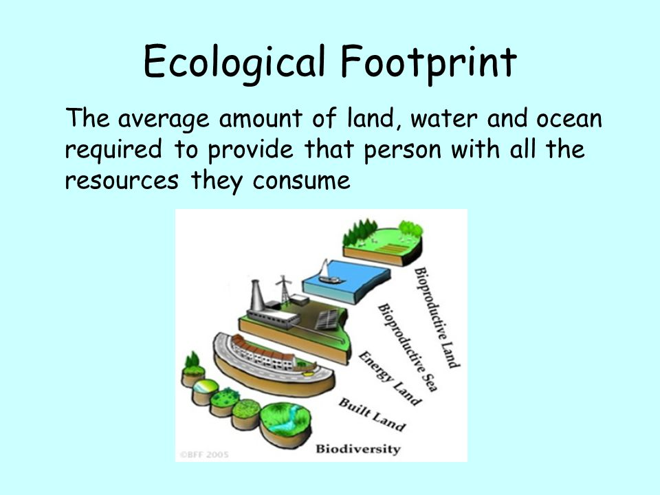 Ecological Footprint The average amount of land, water and ocean required to provide that person with all the resources they consume