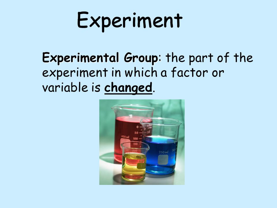 Experimental Group: Experimental Group: the part of the experiment in which a factor or variable is changed.