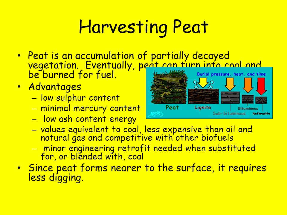 Harvesting Peat Peat is an accumulation of partially decayed vegetation. Eventually, peat can turn into coal and be burned for fuel. Advantages – low